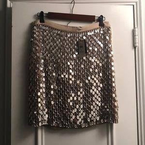 Ann Taylor Sparkle Skirt
